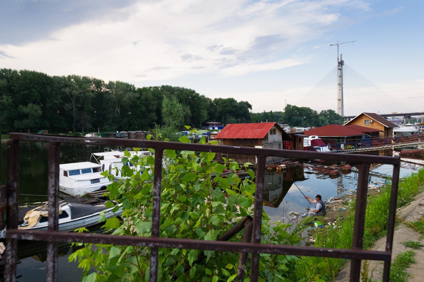 Ein Angler am Fluss Sava